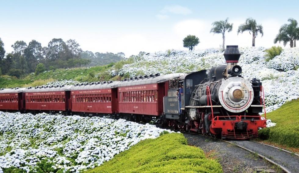Resultado de imagem para imagem do trem maria fumaça